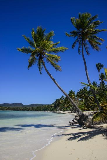 Playa Grande, Las Galeras, Semana Peninsula-Michael Runkel-Photographic Print
