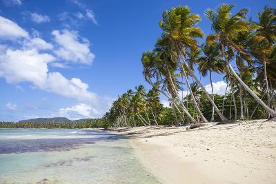 Playa Rincon, Samana Peninsula, Dominican Republic, West Indies, Caribbean, Central America-Jane Sweeney-Photographic Print