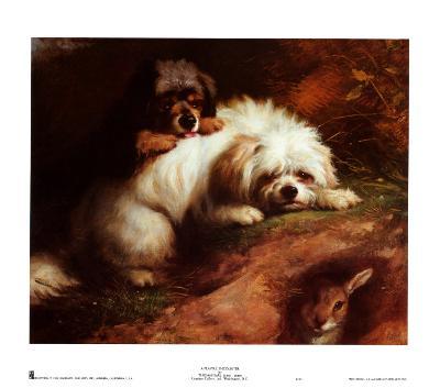 Playful Encounter-Thomas Earl-Art Print