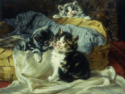 Playful Kittens-Julius Adam-Giclee Print