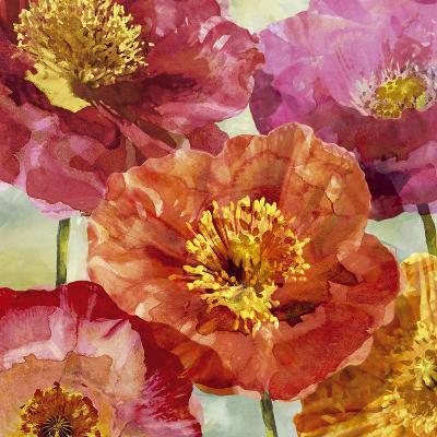 Playful Poppies I-Tania Bello-Art Print
