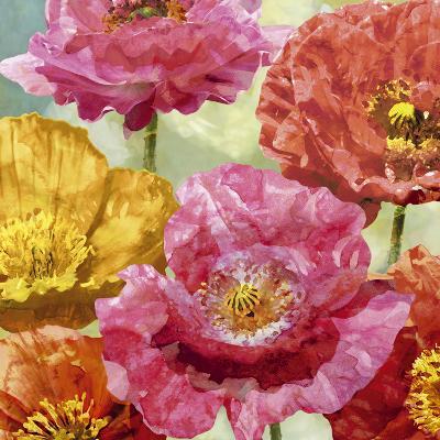 Playful Poppies II-Tania Bello-Art Print