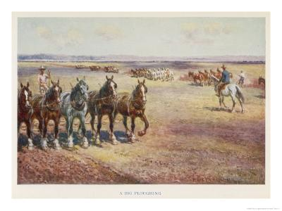 Ploughing in Australia-Percy F^s^ Spence-Giclee Print
