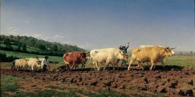 Ploughing in the Region of Nevers: Clearance-Bonheur Marie Rosa-Photographic Print