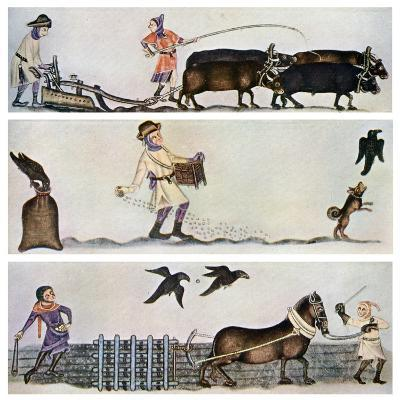 Ploughing, Sowing, and Harrowing, C1300-1340, (C1900-192)--Giclee Print