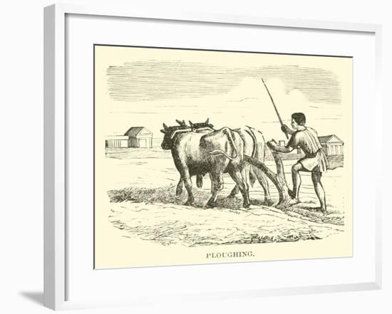 Ploughing--Framed Giclee Print