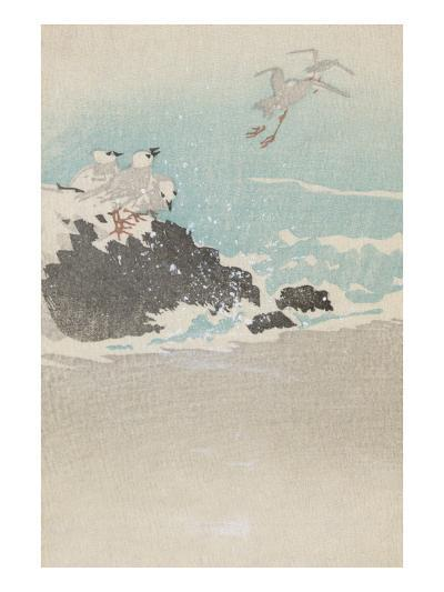 Plovers over Waves--Art Print