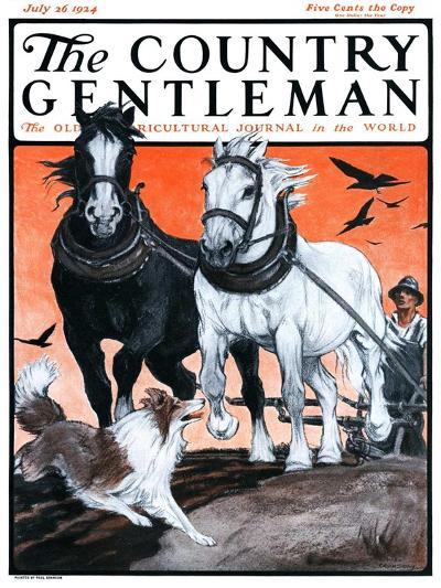 """""""Plowing the Field,"""" Country Gentleman Cover, July 26, 1924-Paul Bransom-Giclee Print"""