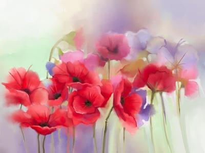Watercolor Red Poppy Flowers Painting. Flower Paint in Soft Color and Blur Style, Soft Green and Pu