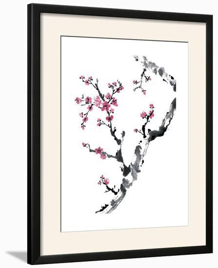 Plum Blossom Branch II-Nan Rae-Framed Photographic Print