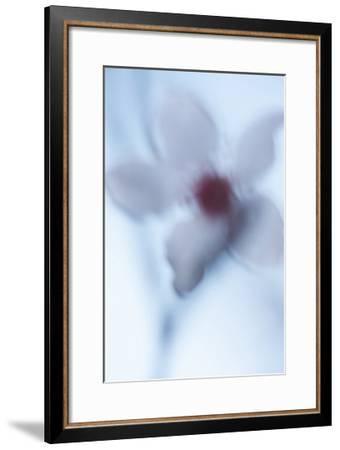 Plum Impressions VII-William Neill-Framed Giclee Print