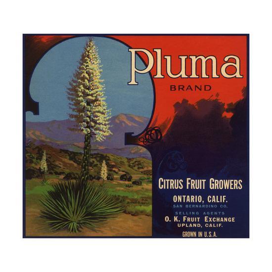 Pluma Brand - Upland, California - Citrus Crate Label-Lantern Press-Art Print