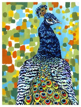 https://imgc.artprintimages.com/img/print/plumed-peacock-ii_u-l-f6fm4u0.jpg?p=0