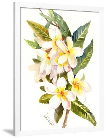 Plumeria Hawaiian Flowers Art Print Suren Nersisyan Art Com