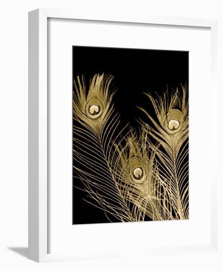 Plumes d'Or I-Jason Johnson-Framed Art Print