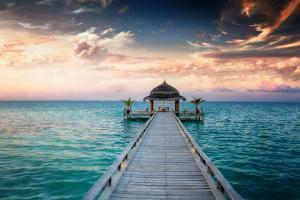 Idyllic Arbor on Water, Maldive Islands by PlusONE