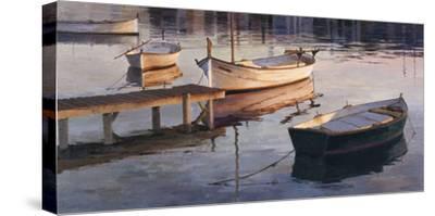 Barques al Port
