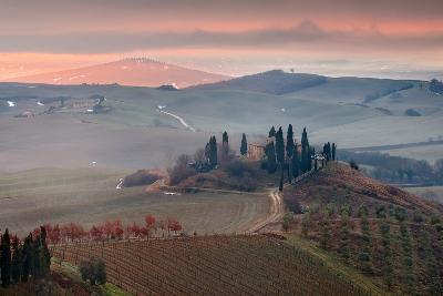 Podere Belvedere-Photographer  Renzi Tommaso tommyre00@hotmai-Photographic Print