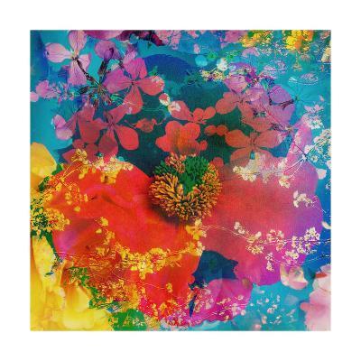 Poeny Abstract II-Alaya Gadeh-Art Print