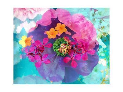 Poeny Multicolor-Alaya Gadeh-Art Print