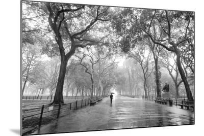 Poet's Walk, Central Park, New York City-Henri Silberman-Mounted Print