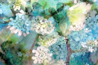 Poetic Photographic Layer Work from White and Blue Flowers with Textures-Alaya Gadeh-Photographic Print