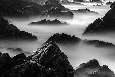 Point Lobos, California-Art Wolfe-Photographic Print