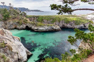 Point Lobos State Natural Reserve-Wolterk-Photographic Print