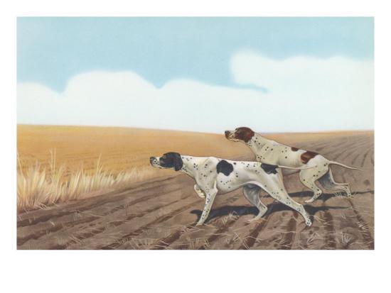 Pointers in Field--Art Print