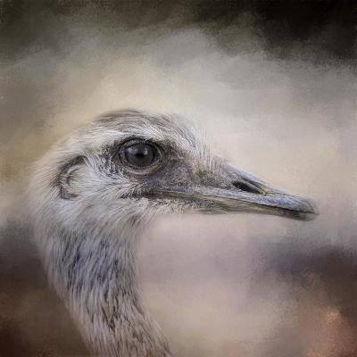 Poised Ostrich-Jai Johnson-Giclee Print