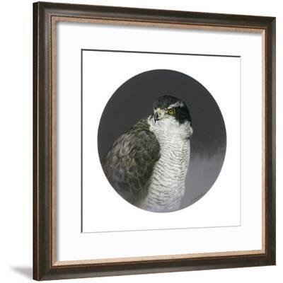 Poised-Joh Naito-Framed Giclee Print