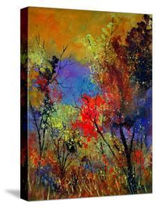 Autumn Colors by Pol Ledent