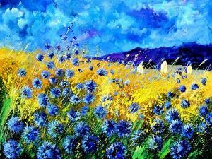 Blue cornflowers 68 by Pol Ledent