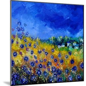 Blue Cornflowers 7741 by Pol Ledent