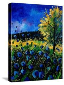Blue Poppies 67 by Pol Ledent