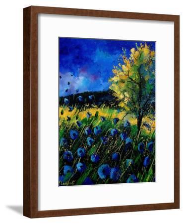 Blue Poppies 67