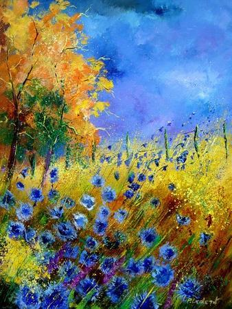 Blue wild flowers with an orange tree