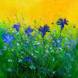 Cornflowers field by Pol Ledent