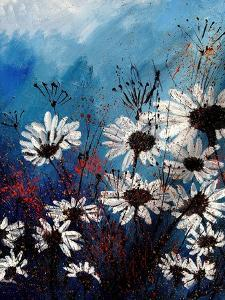 Daisies 569060 by Pol Ledent