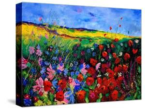 field flowers (poppies, chicorees daisies and many more) by Pol Ledent