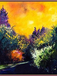 Firtrees and sun by Pol Ledent