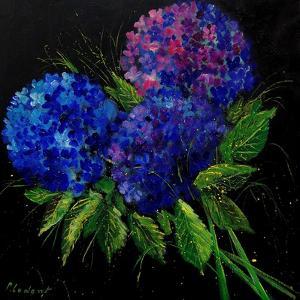 Hydrangeas by Pol Ledent