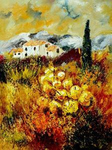 In Provence by Pol Ledent