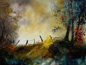 Light in the Forest by Pol Ledent