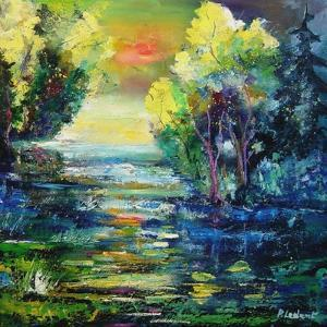 magic pond by Pol Ledent