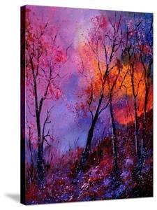 Magic Trees by Pol Ledent