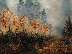 Mist in Fall 56 by Pol Ledent