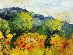 Olive trees 45 by Pol Ledent