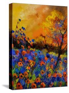 Poppies 675140 by Pol Ledent