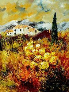 Provence 45 by Pol Ledent